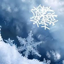 snowflake5_Ink_LI